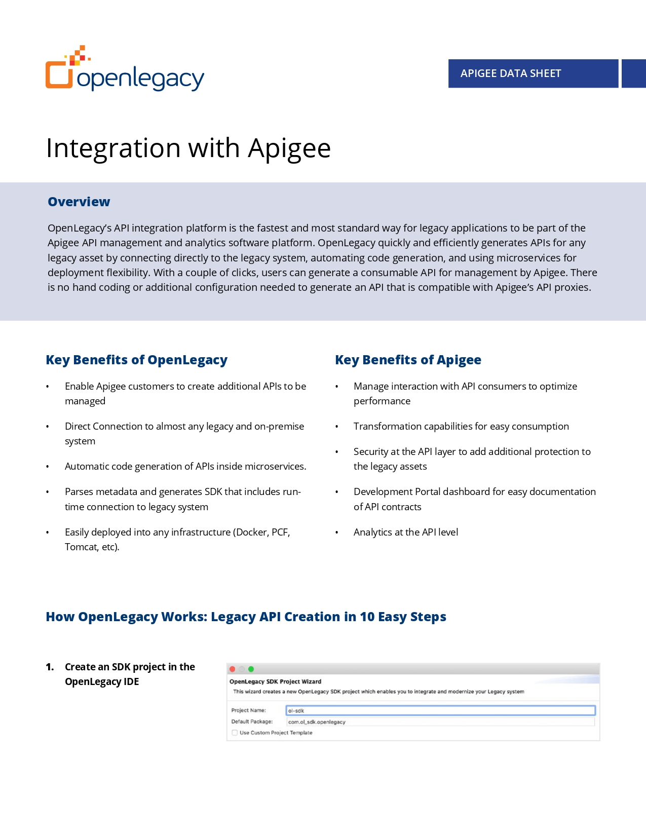 DS-Apigee_page-0001