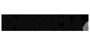 API integration and API management - logo deloitte